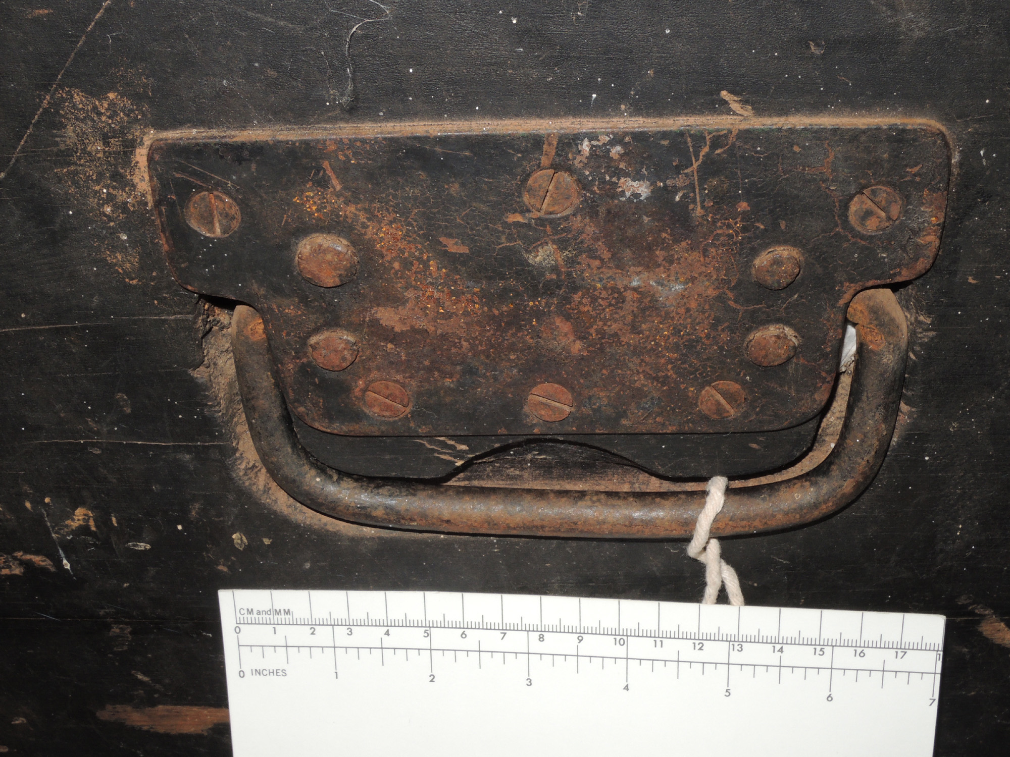 Anthony trunk5.jpg