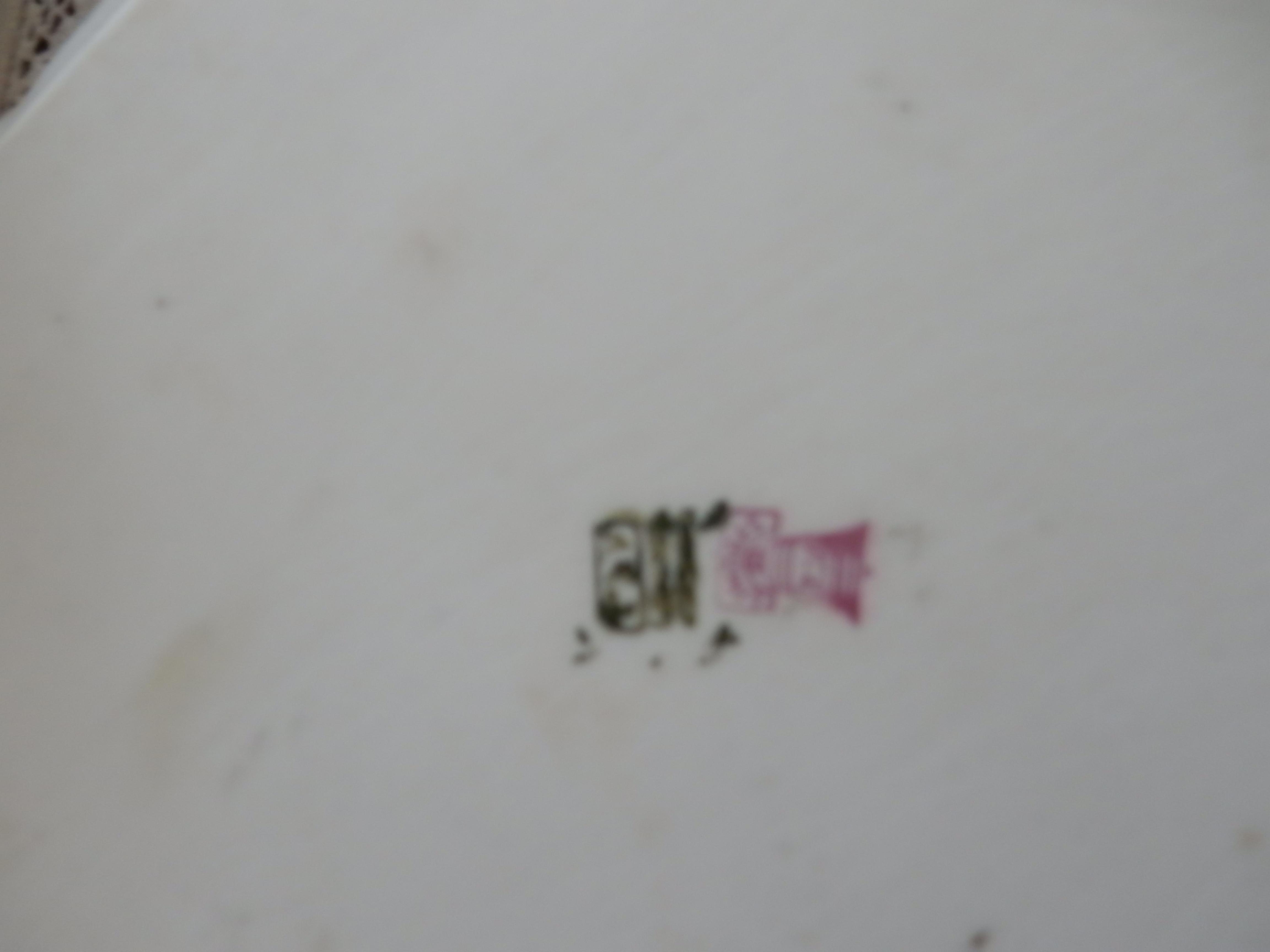 DSCN2738.JPG
