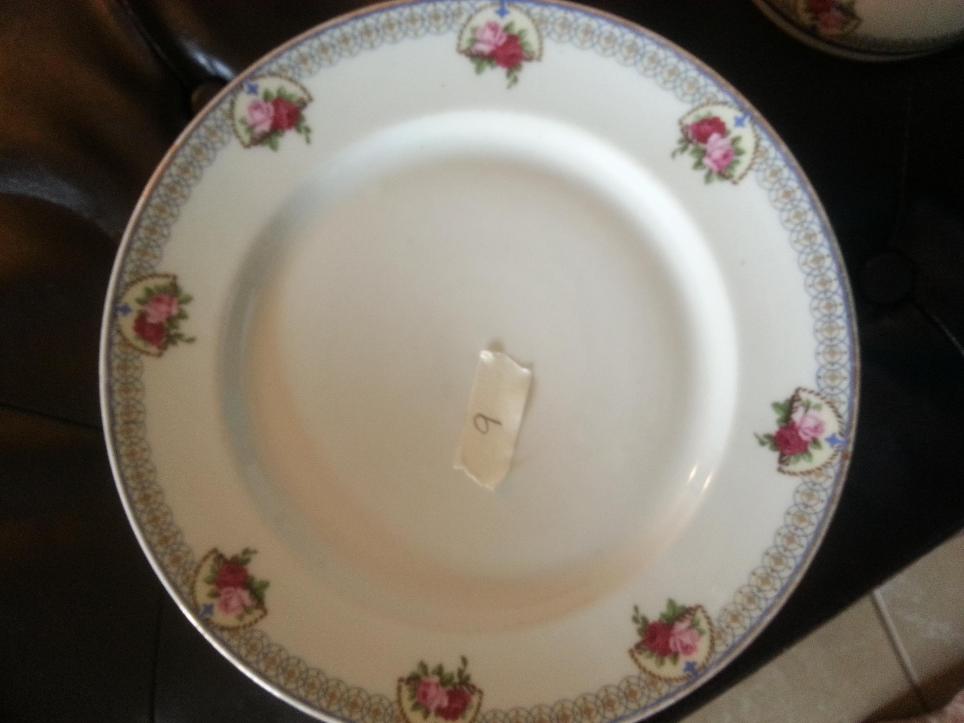 Nine large dinner plates.jpg