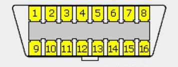 a20d292d-9e63-459a-910f-78200a93f8f6_02 runner.JPG