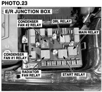 fd08d539-89dd-40ec-94f3-61c4bc8907b7_start relay.jpg